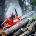 Best Homeowner Chainsaw Reviews The Leading Homeowner Chainsaws