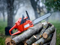 Best Homeowner Chainsaw Reviews: The Leading Homeowner Chainsaws