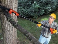 Best Pole Saw Reviews: The Winning Pole Saws