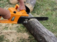 Echo Chainsaw Reviews: Which are The Best Echo Chainsaws