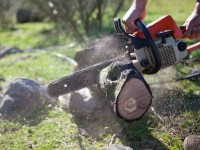 Husqvarna Chainsaw Reviews: Leading Husqvarna Chainsaw
