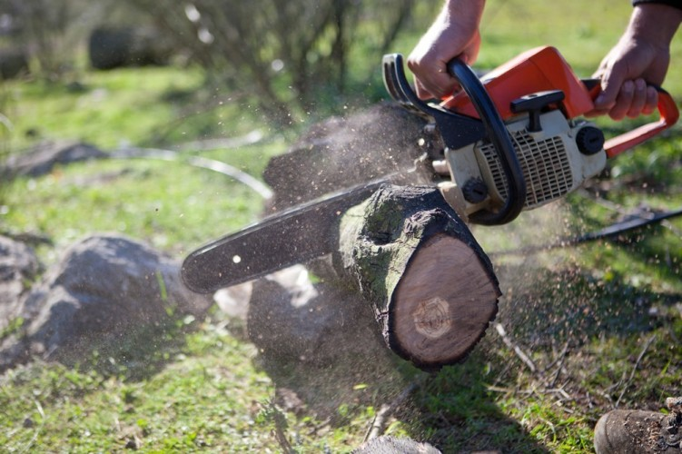 Husqvarna Chainsaw Reviews Leading Husqvarna Chainsaw