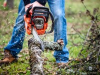 Top 5 Best Chainsaws on the Market