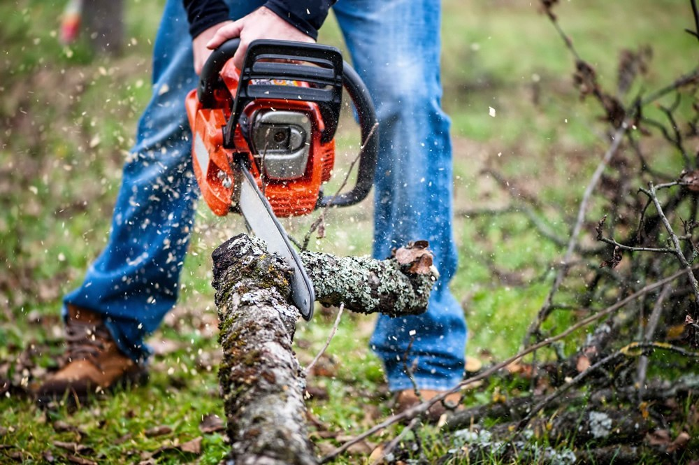 Top 5 Best Chainsaws in the Market