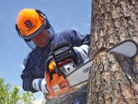 10 Chainsaw Safety Tips Every Homeowner Should Follow