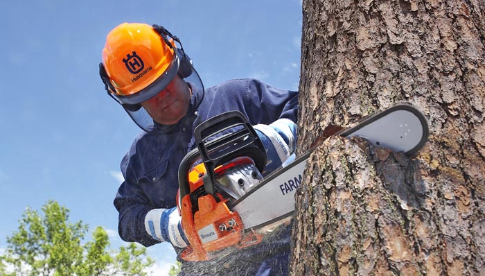 Chainsaw safety equipment being employed