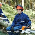 Two forestry workers wearing the best chainsaw helmet for protection