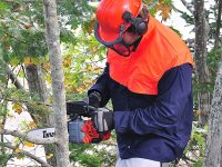 Stay Safe: Best Protective Wear While Using a Chainsaw