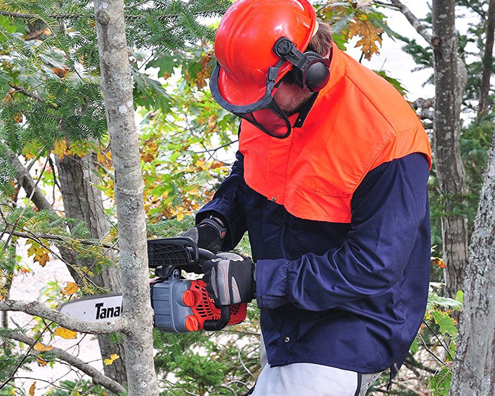 Is the Tanaka the best top handle chainsaw?
