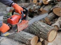 Guide: How to Cut Logs Using a Chainsaw