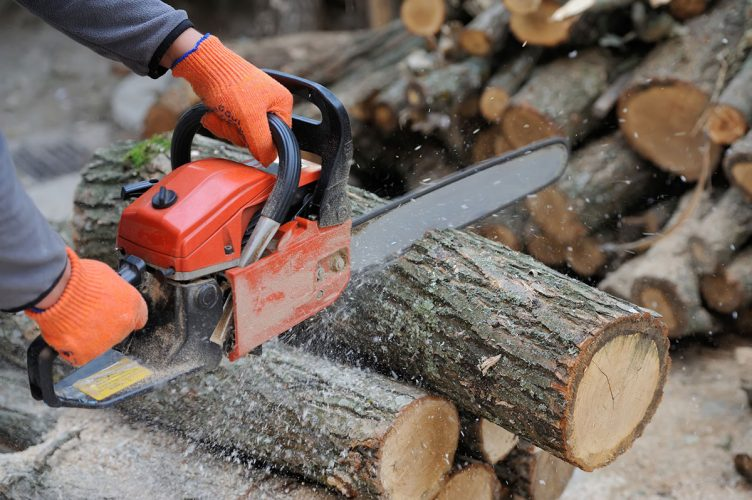 demo of using a chainsaw to cut logs