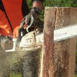 chainsaw cutting through a stump