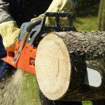 Chainsaw cutting a log