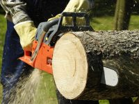 How Does a Chainsaw Work? A Beginner's Guide