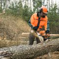A chainsaw operator cutting through a log