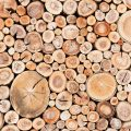 Cord of wood close up