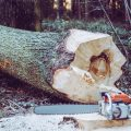 A chainsaw beside a log ready for splitting